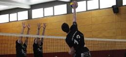 Buck, Volleyball