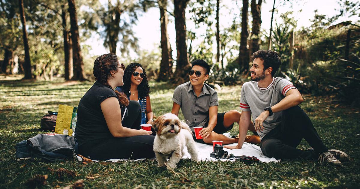 Ratgeber Bayreuth: 1000 gute Gründe für ein Picknick
