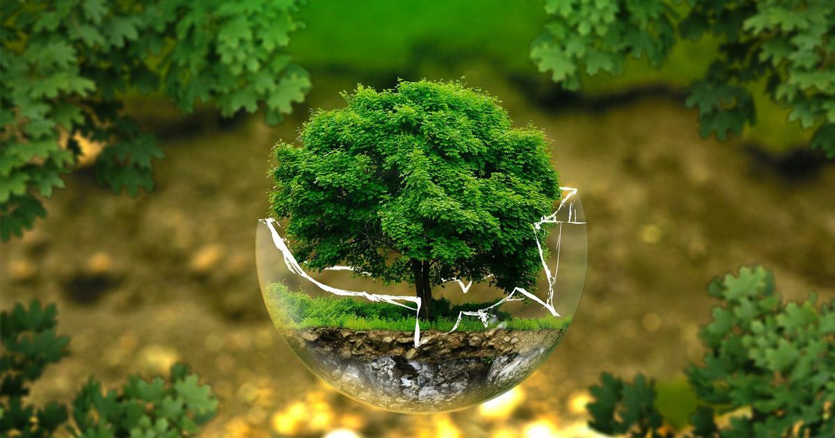 Einsparungen beim Strom-, Heiz- und Wasserverbrauch