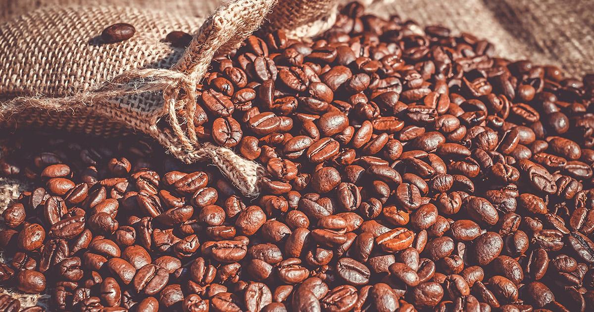 Veranstaltungen in Bayreuth: Online-Vortrag zum Kaffeeanbau